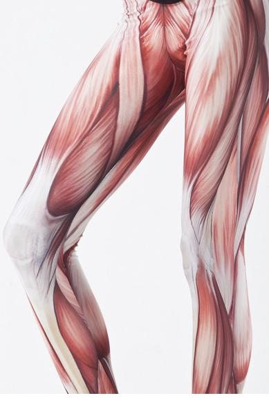 muscle-tights.jpg